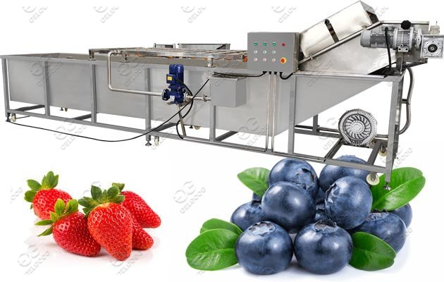 Commercial Use Strawberry Cleaning Machine|Blueberry Washer
