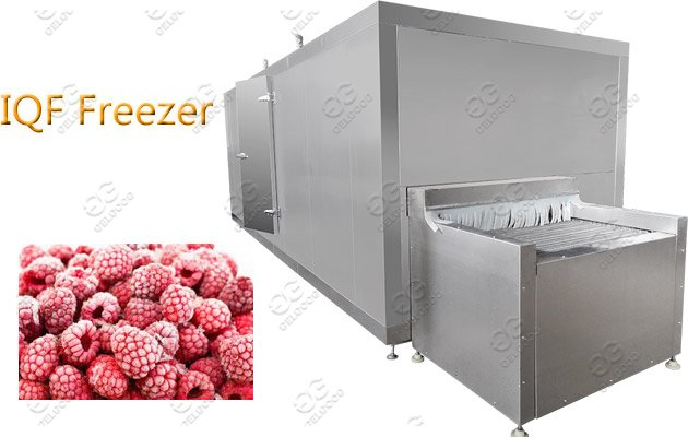 Commercial IQF Fruit Vegetables Food Freezer Machine