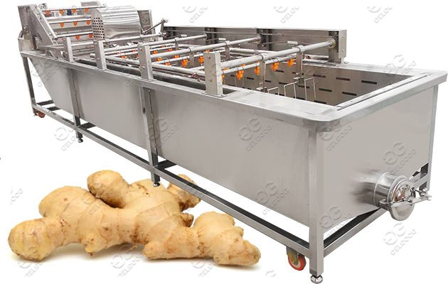 Gelgoog Bubble Type Ginger Garlic Washing Machine