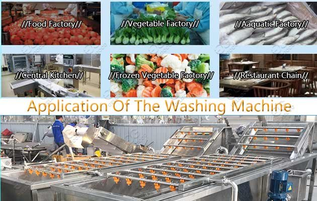 Application Of Industrial Fruit Vegetable Washing Machine