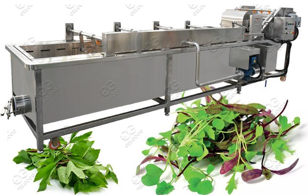 Video Of The Leaf Vegetable Washing Machine