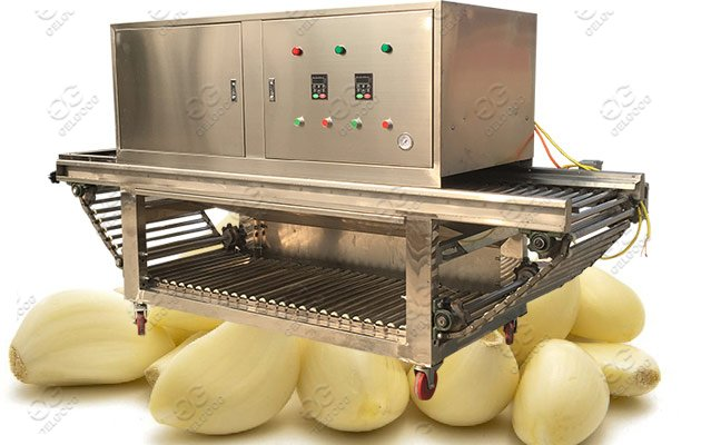 Industrial Use Garlic Peeling Machine