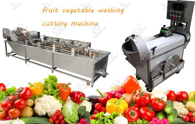 Multi-Function Vegetable Washing Cutting Machine Hot Sale