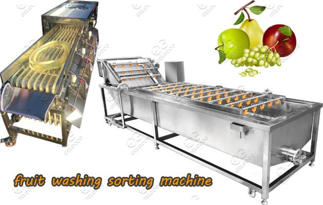 Automatic Fruit Washing Sorting Machine Hot Sale