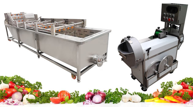 Why Should Choose GELGOOG Vegetable Washing Cutting Machine