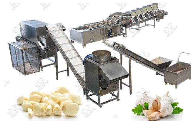 garlic peeling machine line