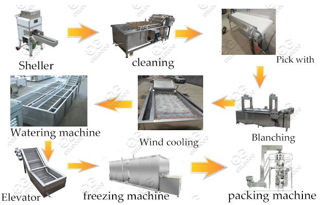 Semi-Automatic Quick-Frozen Corn Kernels Production Line