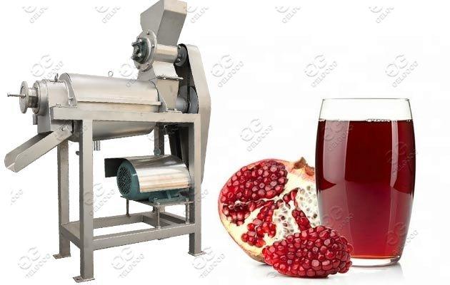 Pomegranate Juice Extractor Machine Supplier