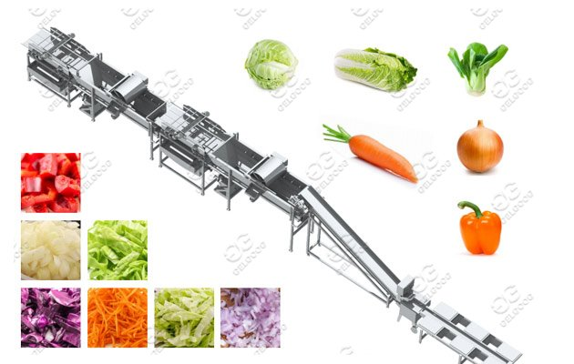 Fruit Vegetables Process Machine Line Solution