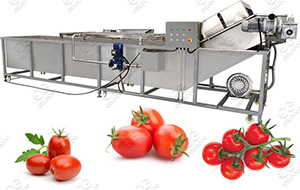 tomato washing machine