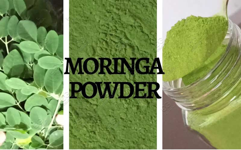 moringa leaf powder machine