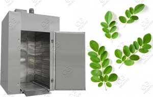 moringa leaves drying machine