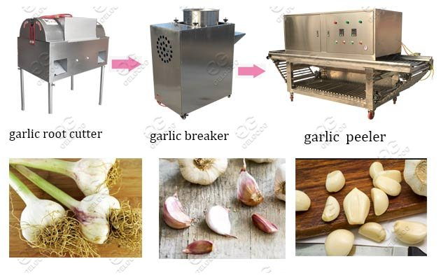 Commercial Garlic Peeling Process Machine Line