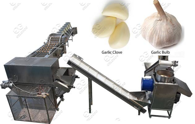 Industrial Garlic Clove Peeling Machine Line|Garlic Skin Remove Machine