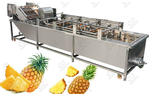 Air Bubble Pineapple Fruit Washing Machine For Commercial Use