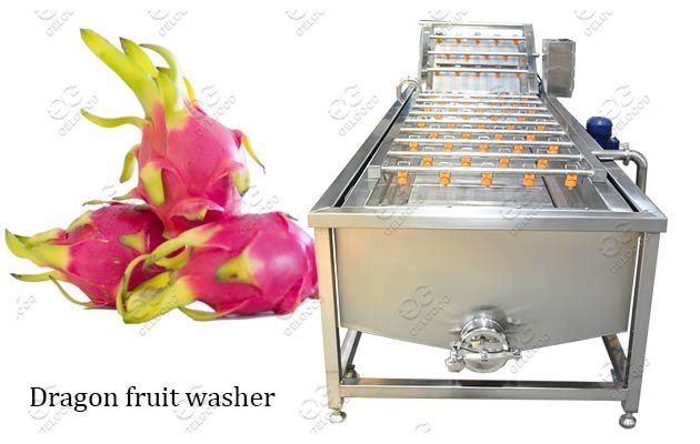 Commercial Use Dragon Fruit Cleaning Machine Hot Sale