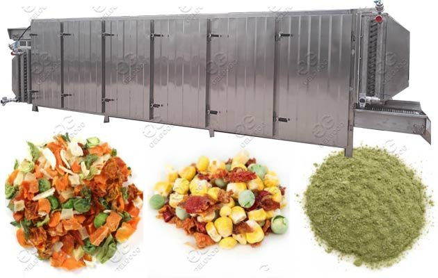 tunnel type fruit vegetable drying machine