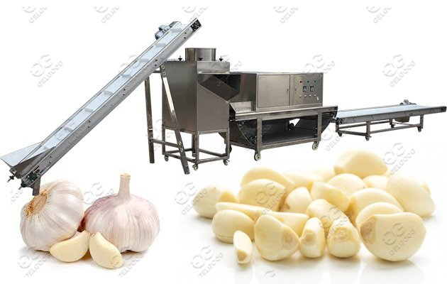 garlic peeling process machine line