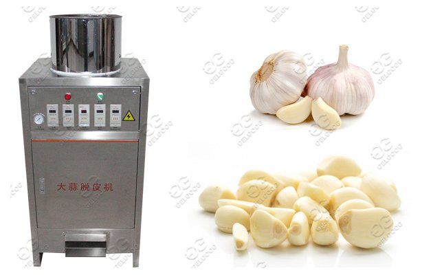 garlic peeling machine price