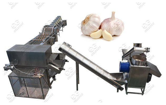 industrial garlic peeling machine price