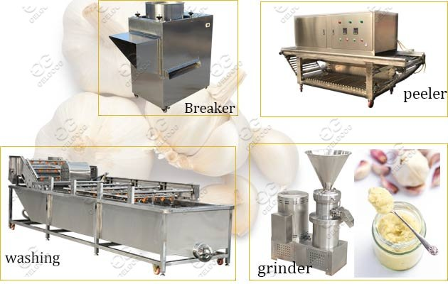 garlic paste making machine line