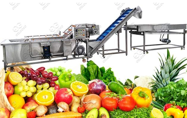 fruit vegetable washing machine