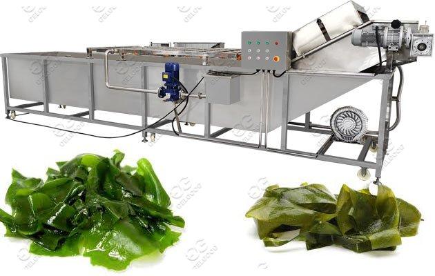 Automatic Seaweed Washing Machine Sea Kelp Washer