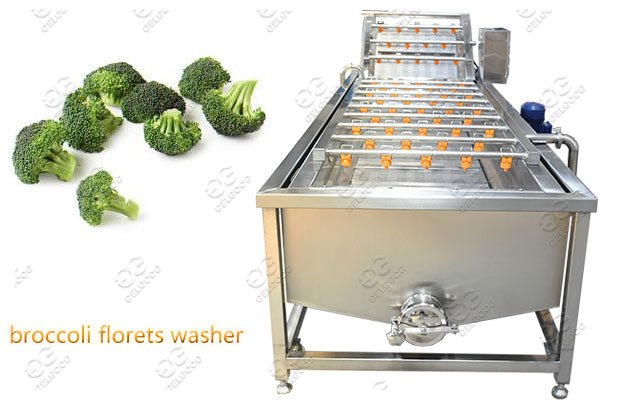 3M/4M/5M Broccoli Florets Washing Machine Supplier