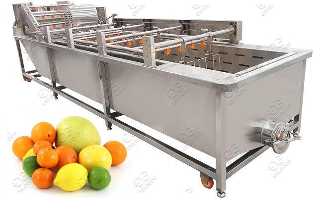 Commercial Fruit Washing Machine|Citr