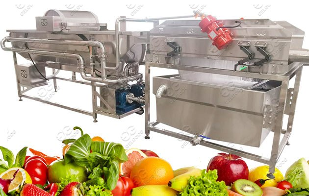 500KG/H Salad Leaves Washing Process Machine