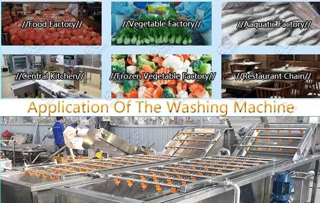 Application Of Industrial Fruit Vegetable Washing Machine