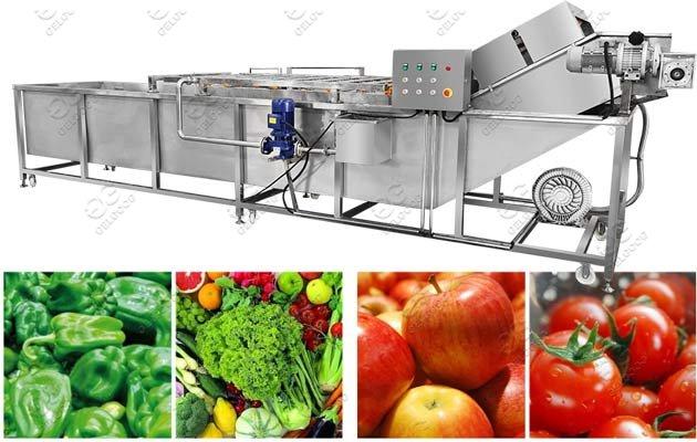 Why We Should Choose Fruit Washing Machine?