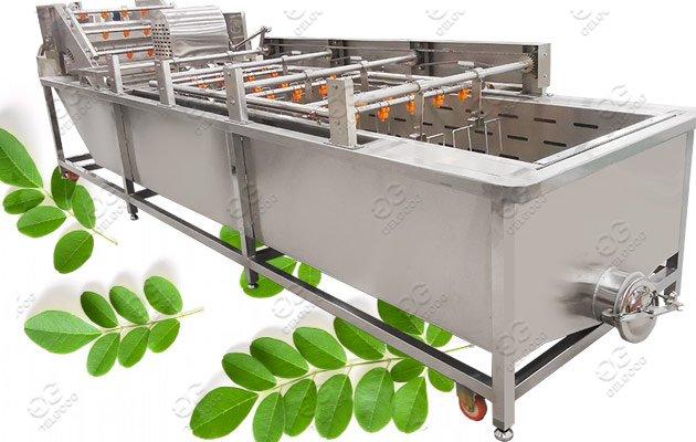 Multi-Function Moringa Leaves Washing Machine Factory Price