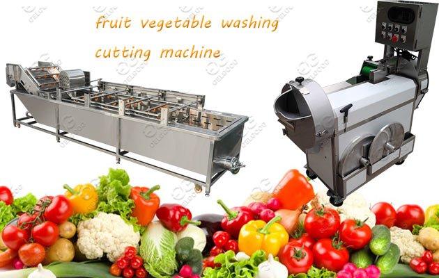 Multi-Function Vegetable Washing Cutt