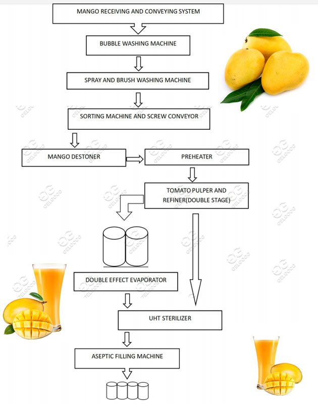 how to make manfo juice