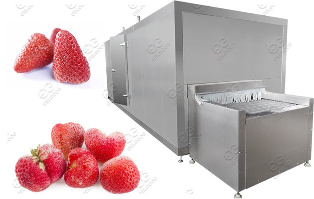 300kg/h Strawberry Fruit Frozen Production Line Solution