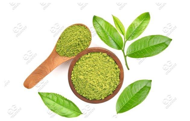 100-150Kg/h Moringa Leaf Powder Makin