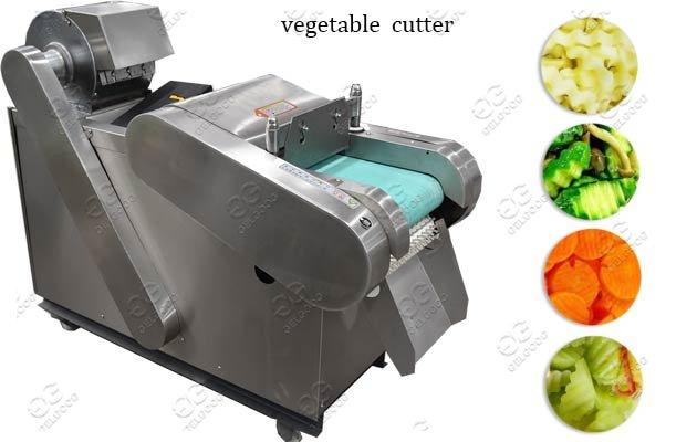 GG-660 Vegatable Cutting Machine Fact