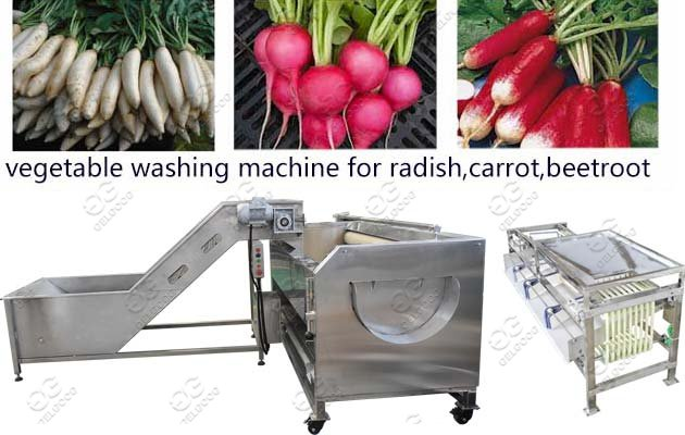 Root Vegetable Cleaning Grading Machine Line Solution