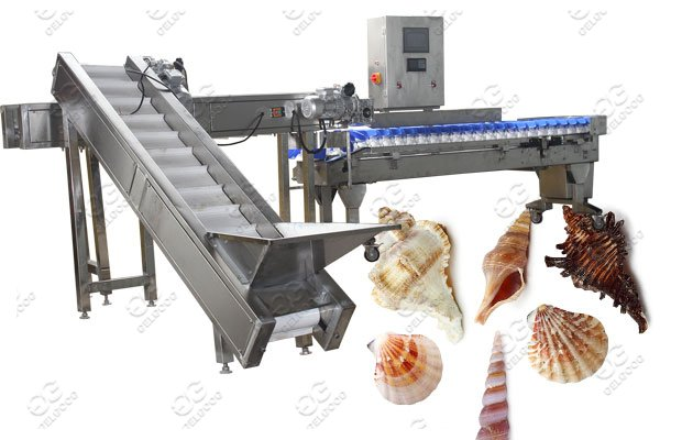 Seafood Oyster Shell/Conch Washing Grading And Freezing Machine Line