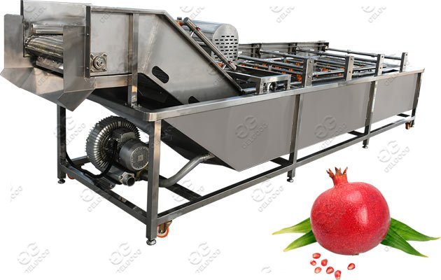 Commercial Use Pomegranate Cleaning M