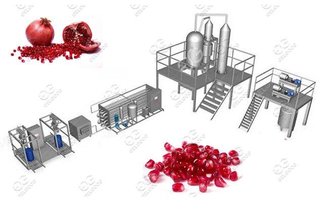 1Ton/h Automatic Pomegranate Peeling