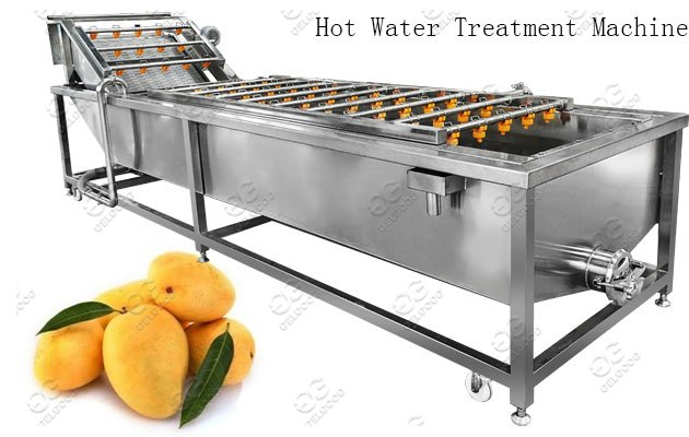 Factory Use Mango Hot Water Treatment Machine
