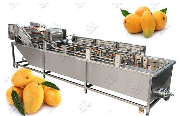 Mango Hot Water Treatment Machine Plant