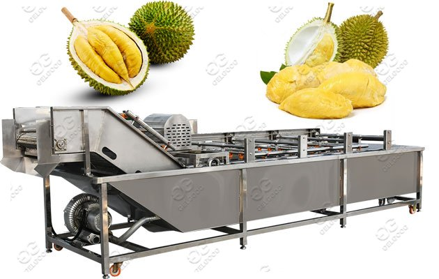 Stainless Steel Durian Washing Machine Hot Sale