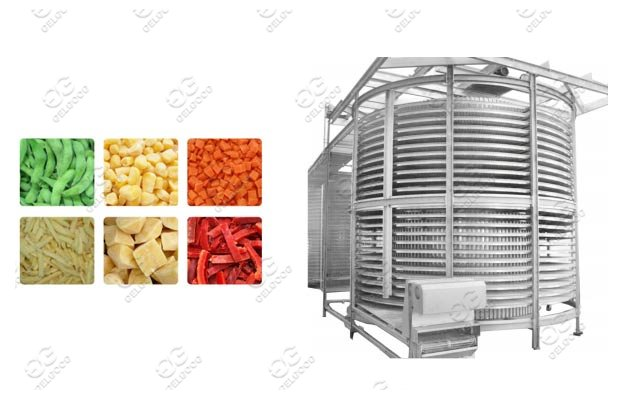 Spiral Quick Vegetable Meat Freezing