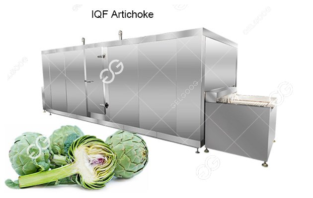 IQF Artichoke Quick-Freezing Machine