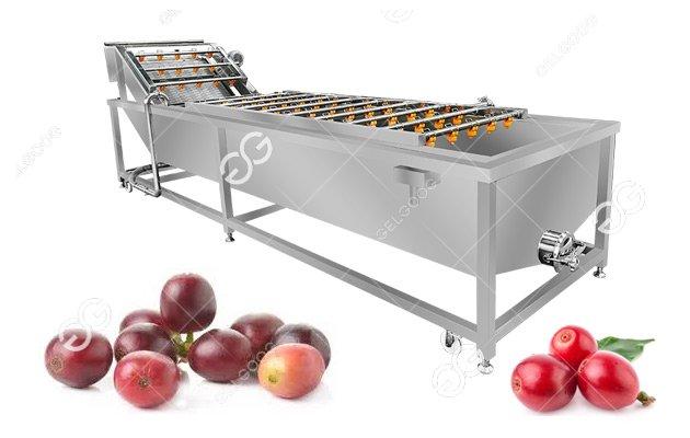 Multi-Function Use Coffee Cherry Washing Machine