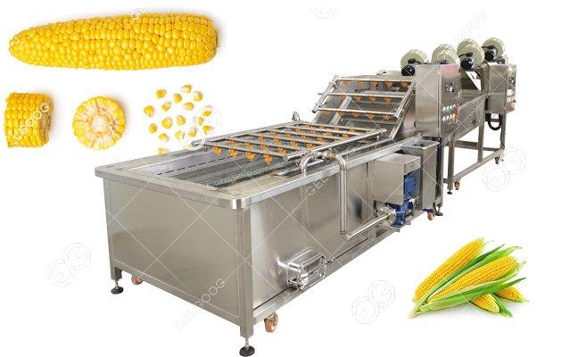 Corn Washing Drying Process Machine Line|Maize Cleaning Equipment