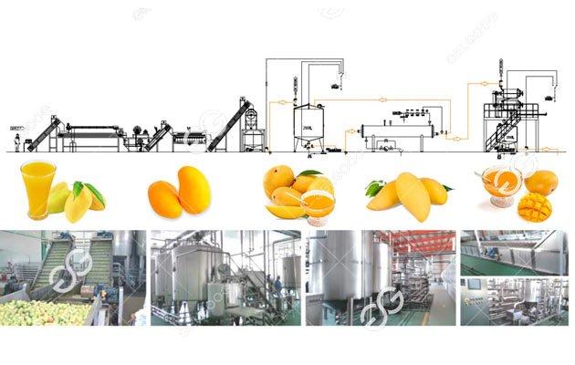 Mango Juice Process Line Solution